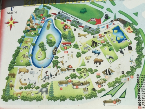 スラバヤ動物園広さ